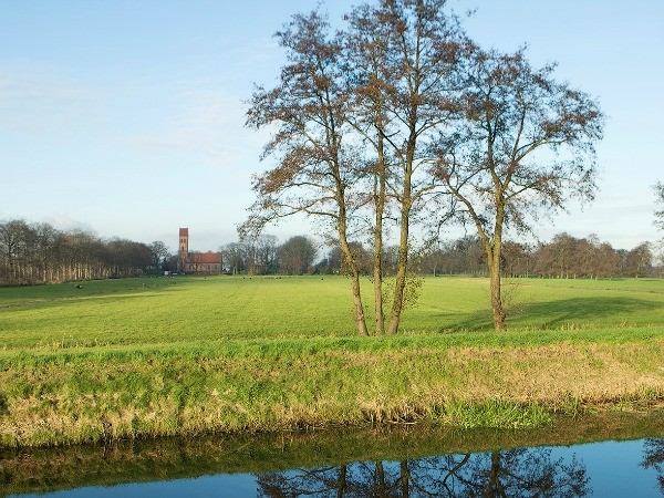 Midwolde in landschap
